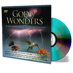 God of Wonders Quicksleeve